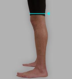 膝上囲採寸: 補足イメージ