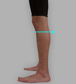 膝下囲採寸: 補足イメージ