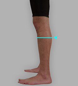 脹脛囲採寸: 補足イメージ